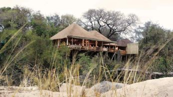 Londolozi Founders Camp 3 afrique du sud founders camp3