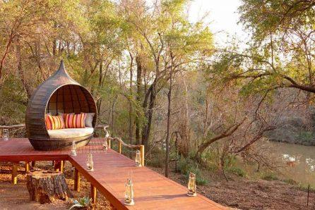 Jaci's Safari Lodge 13 afrique du sud jacis safari lodge13