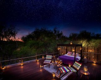 Jaci's Safari Lodge 6