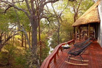 Jaci's Safari Lodge 7 afrique du sud jacis safari lodge7