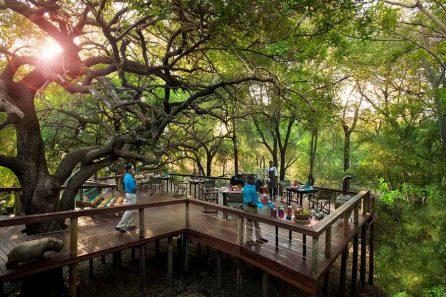 Jaci's Safari Lodge 11