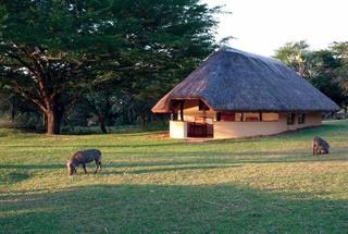 Nos lodges en Afrique du Sud 99