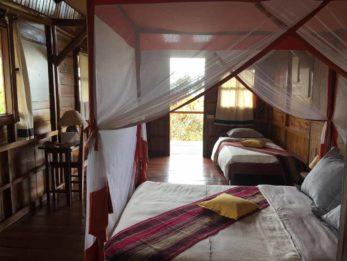 Nature Lodge 6