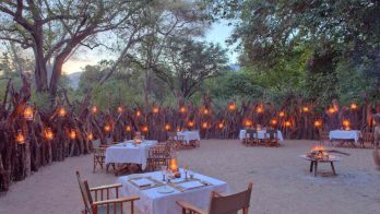 Lake Manyara Tree Lodge 7