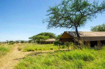Serengeti Kati Kati Camp 6