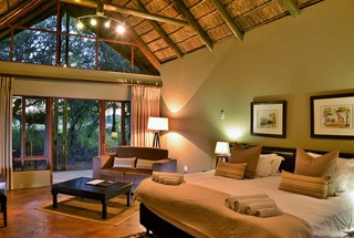 Nos lodges en Afrique du Sud 157 afrique du sud black rhino game lodge0