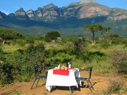 Moholoholo Forest Camp 2 afrique du sud moholoholo forest camp3