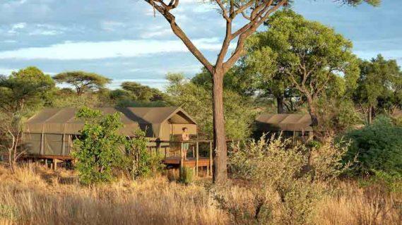 Tlouwana Camp 12 botswana tlouwana camp13