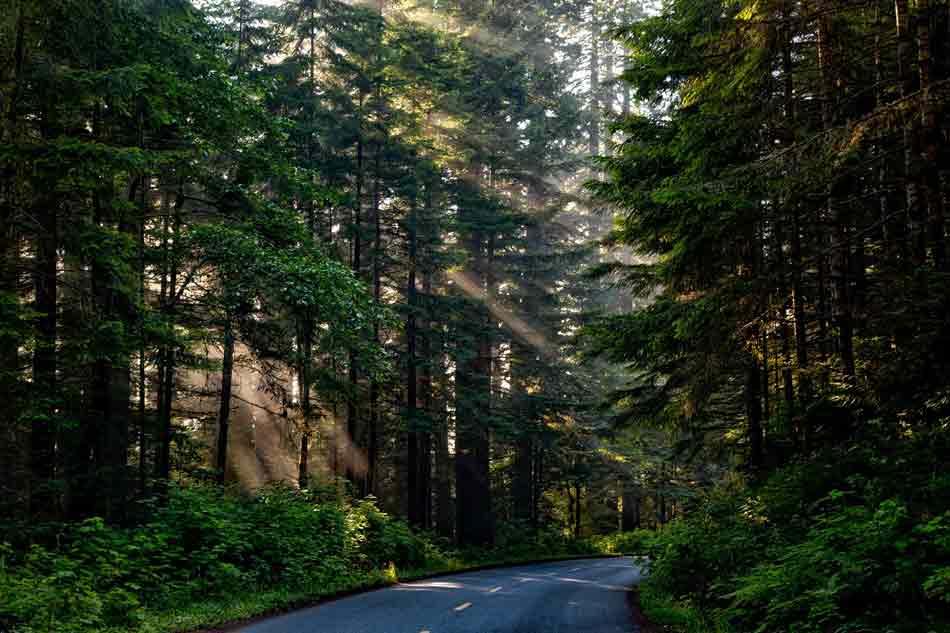 Autotour Nord Californie et Oregon 12 usa autotour nord californie oregon1