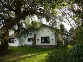 Hacienda Zuleta 15 equateur hacienda zuleta11
