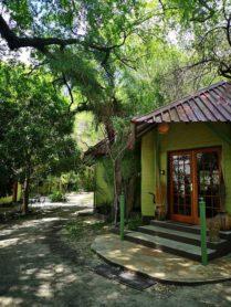 Mahangu Safari Lodge 5 namibie mahangu safari lodge4