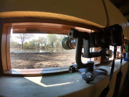 Wildlife Camp 7 zambie wildlife camp2