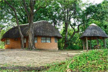 Wildlife Camp 2 zambie wildlife camp4