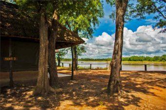 Wildlife Camp 10 zambie wildlife camp6