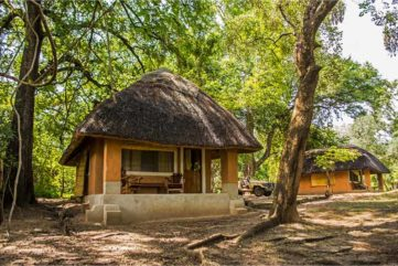 Wildlife Camp 5 zambie wildlife camp7