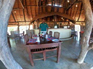 Wildlife Camp 4 zambie wildlife camp8