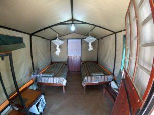 Wildlife Camp 11 zambie wildlife camp9