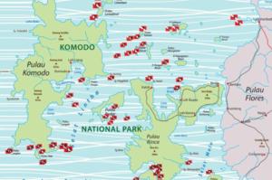 Komodo, croisière découverte 1 komodo