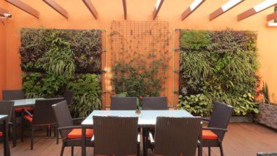Plumeria Hôtel 7 madagascar plumeria hotel5