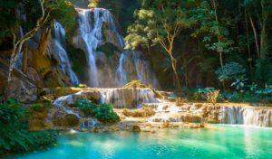 Laos 1 laos nature faune sauvage1
