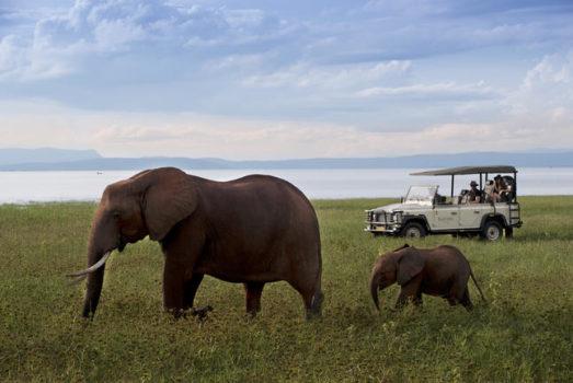 Bumi Hills Safari Lodge 35 zimbabwe african bush camps bumi hills safari lodge35
