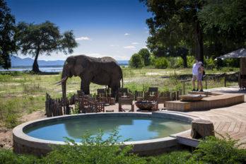 Nyamatusi Camp 11 zimbabwe african bush camps nyamatusi camp11