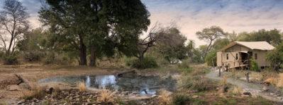 Thorntree River Lodge 3 zimbabwe african bush camps thorntree river lodge3