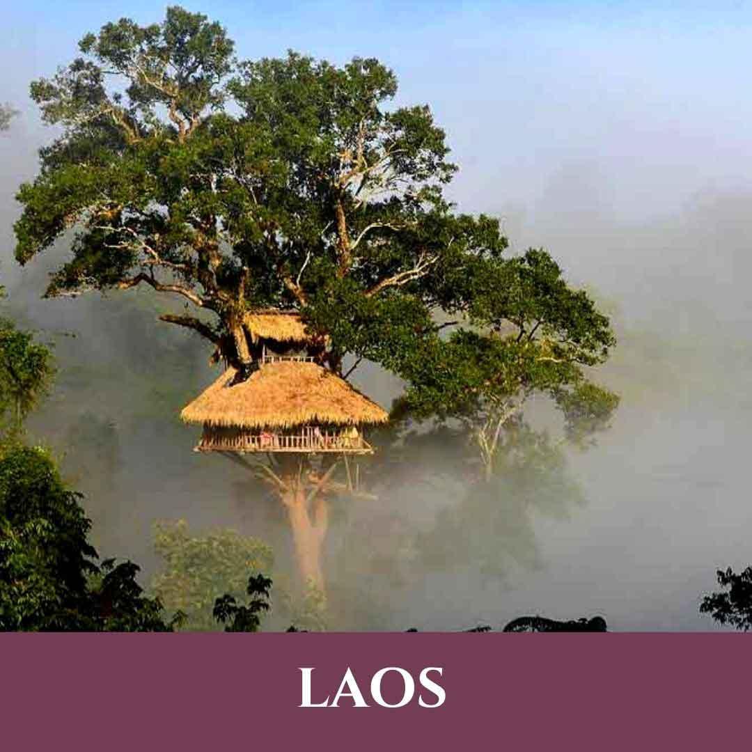 Laos 10 Vignette Laos