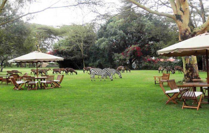 Lake Naivasha Country Club 1 kenya lake naivasha country club2