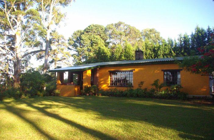 Zomba Forest Lodge 1 malawi zomba forest lodge1