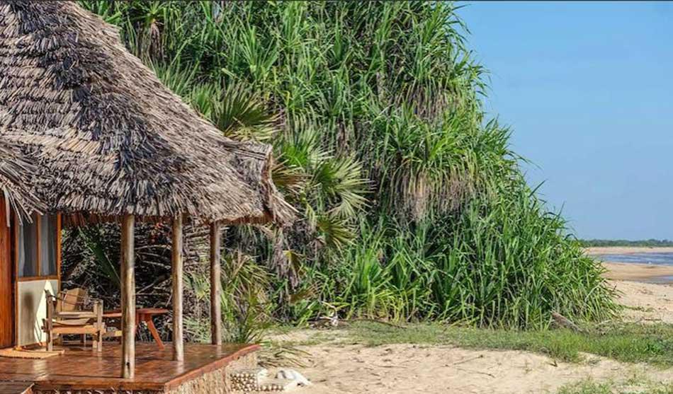 Séjour Saadani Safari Lodge 1 tanzanie du sud module saadani safari lodge1