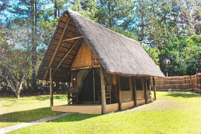 Pioneer Camp 1 zambie pioneer camp1