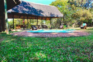 Pioneer Camp 5 zambie pioneer camp3