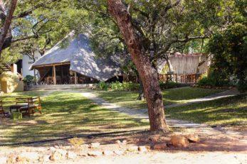Pioneer Camp 2 zambie pioneer camp4