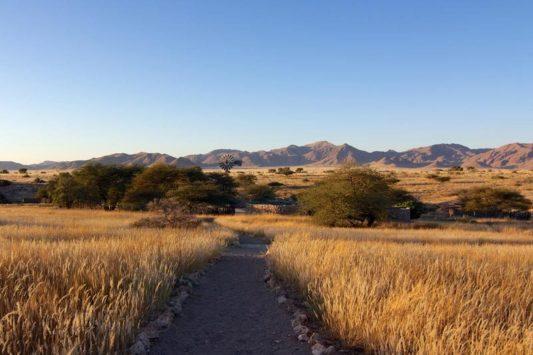 Agama Lodge 14 namibie agama lodge15
