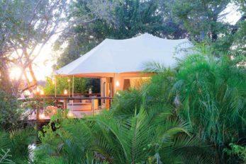 Ila Safari Lodge 2 zambie ila safari lodge4