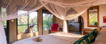 Kaingu Safari Lodge 7 zambie kaingu safari lodge4