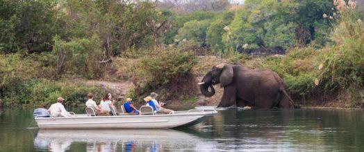 Kaingu Safari Lodge 4 zambie kaingu safari lodge7