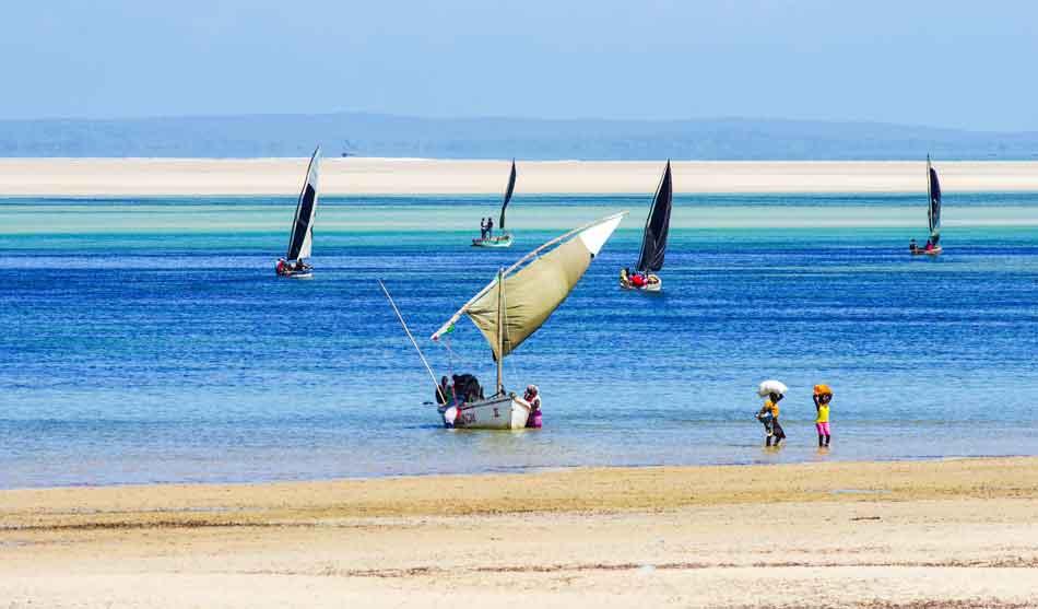 Safari Exclusif, Brousse et Plage Tropicale 3 mozambique safari exclusif broussse plage1